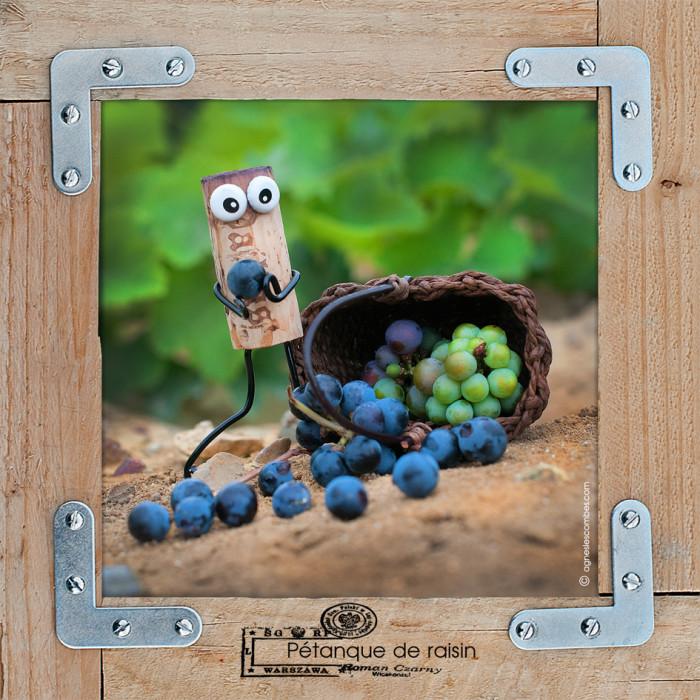 Pétanque de raisin